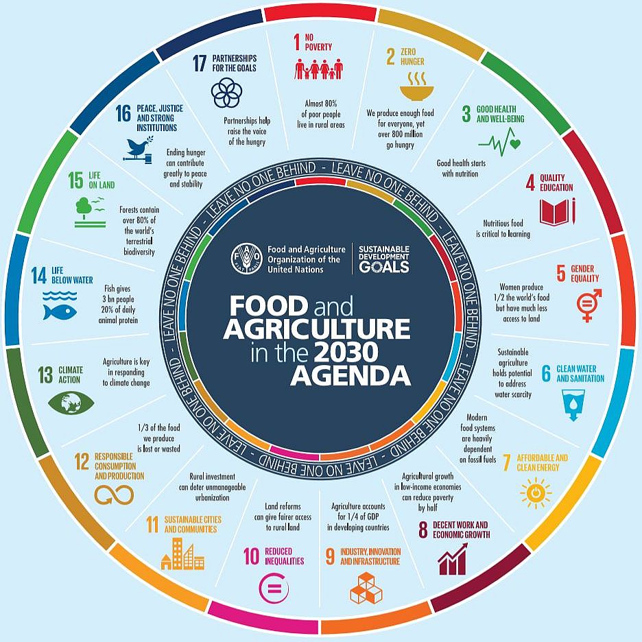 Sustainable Development Goals and food and agriculture