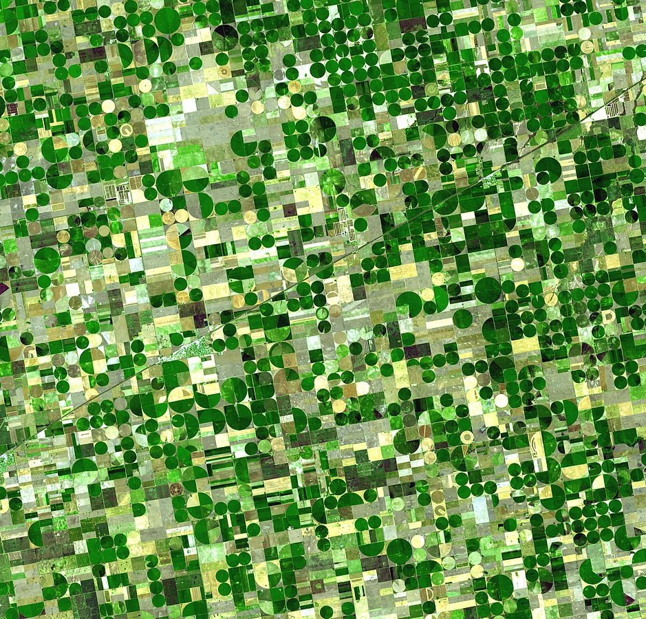 Farmland in Kansas, aufgeteilt in Sections und Quarter Sections