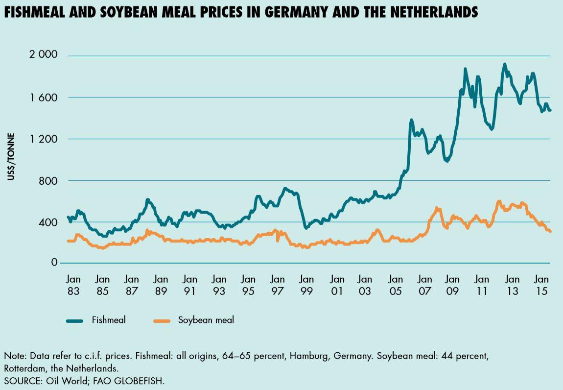wann sind die fruchtbaren tage bei der frau bundesrepublik deutschland